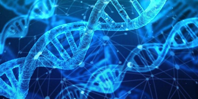 Forensic Genetic Genealogy