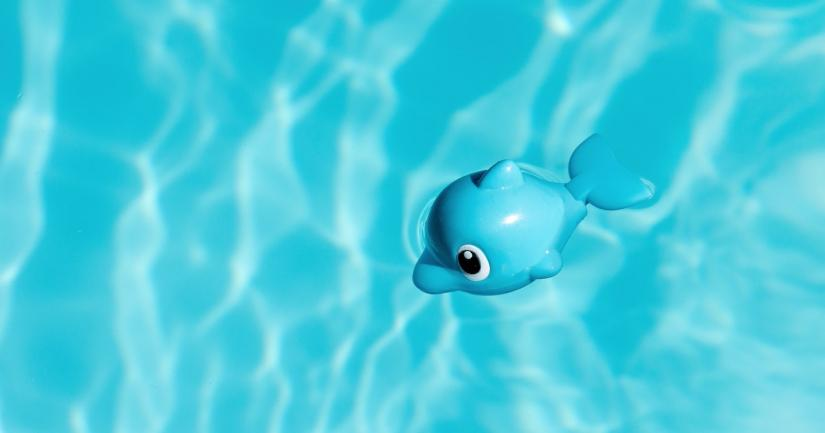 Toy whale floating in pool