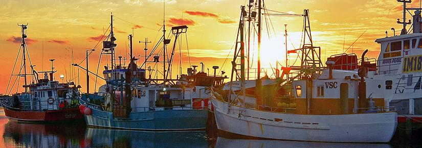 Fishing vessels moored as the sun rises
