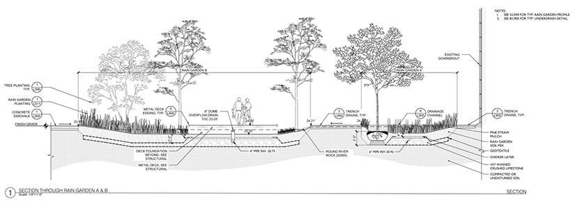Line drawing of tulane university stormwater gardens