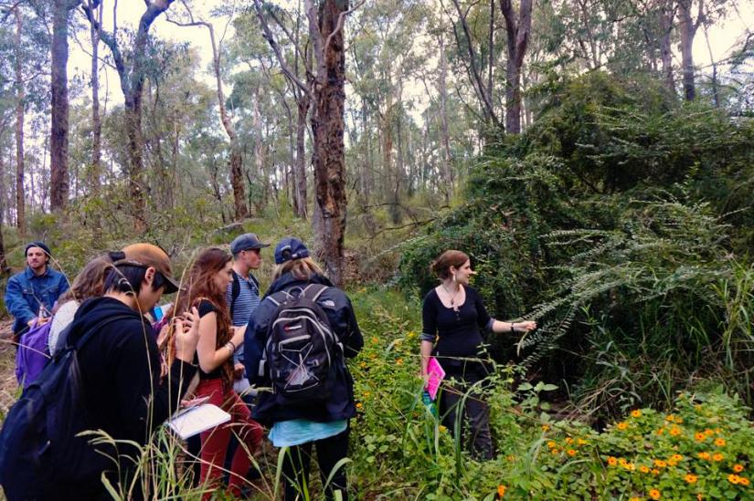Biosphere field trip -students outside collecting samples
