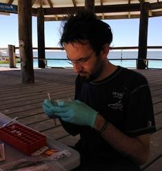 C3 marine microbial ecologist Jean Baptiste Raina undertaking fieldwork in the GBR