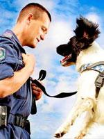 Police man with dog
