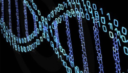 DNA digitally produced on screen