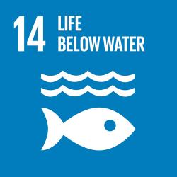 UN Sustainable Development Goal - Life Below Water Icon