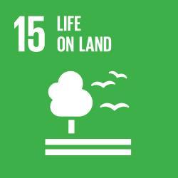 UN Sustainable Development Goal - Life on Land Icon