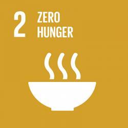 UN Sustainable Development Goal - Zero Hunger Icon