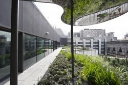 Building 7 rooftop garden