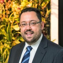 Michael Blumenstein Associate Dean (Research Strategy and Management)