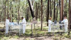 Australian Facility for Taphonomic Research