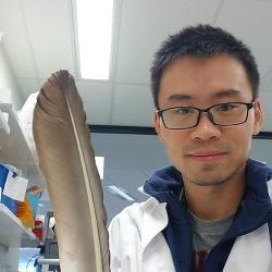 Jianguo Li with feather