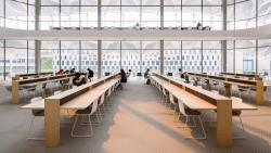 Sunlight filters in through large windows onto rows of wooden desks where students are studying