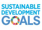 UN Sustainable Development Goals Logo